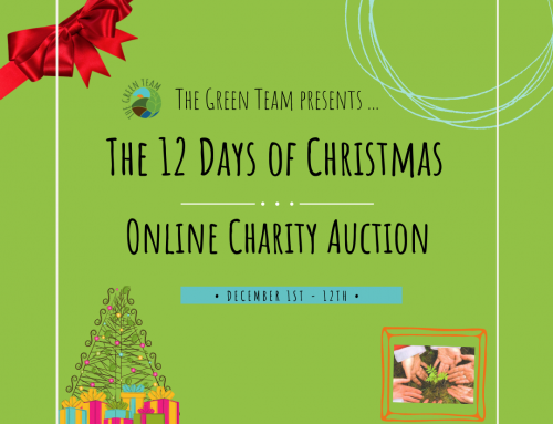 Online Christmas Auction raises over £700